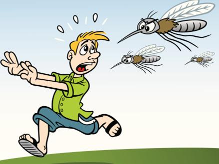 零添加驱蚊子1.jpg